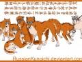 Шестерка тел в форме собак
